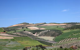 Landscape in Andalusia, Spain Stock Photo