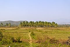 Landscape in Andhra Pradesh Royalty Free Stock Photo
