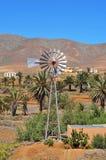 Landscape of Antigua, Fuerteventura Royalty Free Stock Image