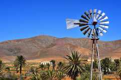 Landscape of Antigua, Fuerteventura, Canary Islands, Spain Stock Image