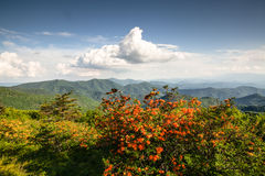 Appalachian Trail Blue Ridge Mountains NC Stock Photo