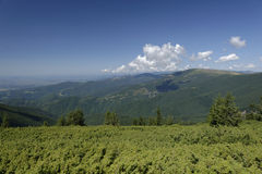 Landscape of Apuseni Mountains  Stock Photo