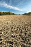 Landscape of arable cultivation. Autumn cultivated arable land plow with trees in the background Royalty Free Stock Image
