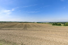 Landscape with arable land. Forest and blue sky Stock Photo