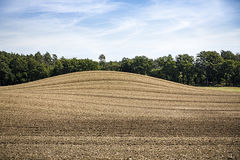 Landscape with arable land. Hill and forest Royalty Free Stock Images