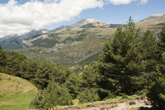 Landscape in the Aragonese Pyrenees, Spain. A closeup view of trees and mountains in the background Aragonese Pyrenees, Spain Stock Photo