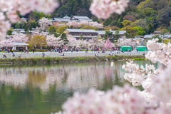 Landscape of arashiyama in kyoto Royalty Free Stock Photo