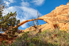 Landscape Arch, Arches N.P. Utah Royalty Free Stock Images