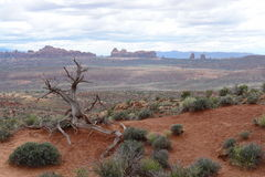 Landscape. Arches National Park, Utah Stock Photos