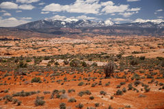 Landscape in Arches National Park in Utah, USA Stock Photography