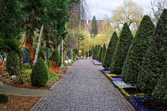 Alley in Park decoratively landscaped in spring. The landscape architecture of a park in spring. Paved path with decorative trimmed hedges, ornaments and Stock Image