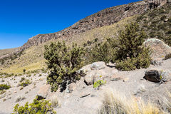Landscape of an arid valley in the Andean highlands Royalty Free Stock Photography