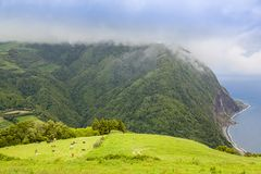 Landscape around Furnas, Sao Miguel Island, Azores archipelago. Portugal royalty free stock photography