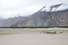 Landscape around Hunder Sand dunes in Nubra Valley, Ladakh, India royalty free stock photography