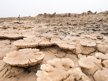 Landscape around lake Dallol in Danakil Depression, Ehtiopia royalty free stock photos