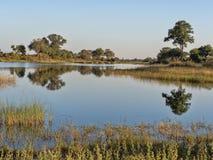 Landscape around the lake, reservation Bwabwata, Namibia Royalty Free Stock Photography