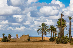 Landscape around Marrakesh. Morocco. In the background the mountains of the High Atlas Stock Photos