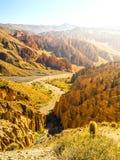 Landscape around Quebrada de Palala Valley with eroded spiky rock formations, El Sillar pass near Tupiza, Bolivia, South royalty free stock photography