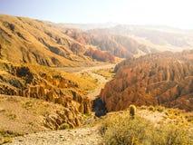 Landscape around Quebrada de Palala Valley with eroded spiky rock formations, El Sillar pass near Tupiza, Bolivia, South stock image