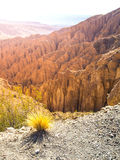 Landscape around Quebrada de Palala Valley with eroded spiky rock formations, El Sillar pass near Tupiza, Bolivia, South royalty free stock photo