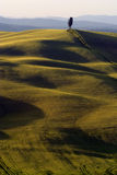 Landscape around Siena called Crete Senesi Royalty Free Stock Photography