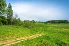 The landscape around the village of St. Michael, Ivanovo oblast, Royalty Free Stock Photos