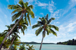 Landscape of  Arutanga island in Aitutaki Lagoon Cook Islands Royalty Free Stock Photos