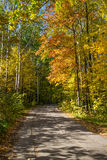 Landscape with asphalt road. In autumn Stock Images