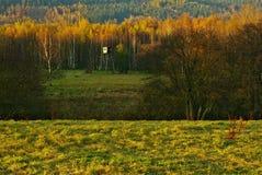 Free Landscape At Sunset Stock Photo - 16815950