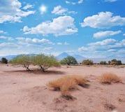 Landscape of Atacama desert. Stock Image