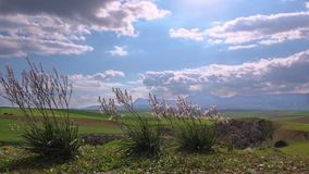 Landscape of Atlas mountains and field Morocco. Landscape of Atlas mountains and green field Morocco stock video