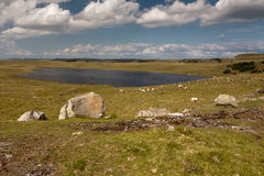 Landscape of Aubrac Royalty Free Stock Images