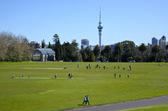 Landscape of Auckland Domain New Zealand Stock Photography