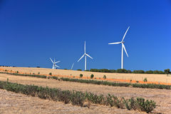Landscape.Australia. A rural landscape with windmill. Near  Nambung National Park,South Western Australia Stock Images