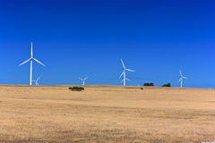 Landscape.Australia. A rural landscape with windmill. Near  Nambung National Park,South Western Australia Royalty Free Stock Image