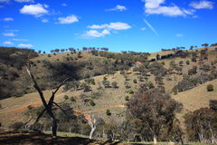 Harsh landscape Australian countryside rolling hills Royalty Free Stock Images
