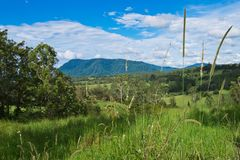 Landscape in Australian hinterland Stock Photo