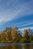 Landscape during autumn. The picture shows a landscape during autumn stock photography