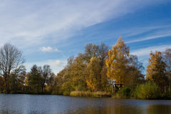 Landscape during autumn. The picture shows a landscape during autumn royalty free stock photo