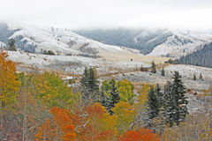 Landscape with autumn colors and first snow Stock Photography