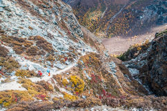 Landscape autumn. Daocheng, Sichuan , China - October 22,2008 : Chinese tourist visting autumn forest in Yading national level reserve in Daocheng, Sichuan Stock Photos