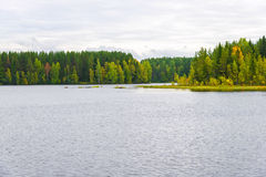 Landscape of autumn forest by the lake stock photo