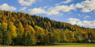 Landscape in autumn forest valley and home. stock images