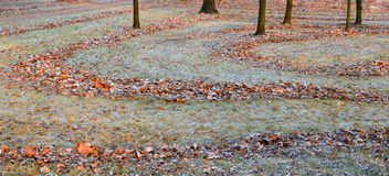 Landscape. Autumn frosts in the gardens, hoarfrost on a grass an Stock Photography