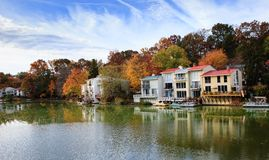Landscape:  Autumn at the Lake Reston VA Royalty Free Stock Image