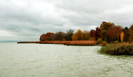 Landscape in autumn at Lake Balaton, Hungary Royalty Free Stock Image