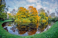 Landscape autumn landscape reflection of the forest in the lake. Royalty Free Stock Photography