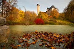 Landscape with Autumn leaves Royalty Free Stock Image
