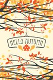 Landscape with autumn leaves on branches of trees. Vector banner with the words Hello autumn. Autumn illustration with autumn leaves on the branches of trees in royalty free illustration