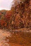 Landscape of autumn maple Stock Photography